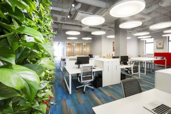 Comech Projektowanie Oświetlenia Przestrzeni Biurowych